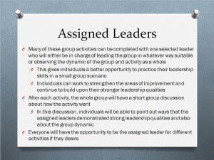 assigned leader